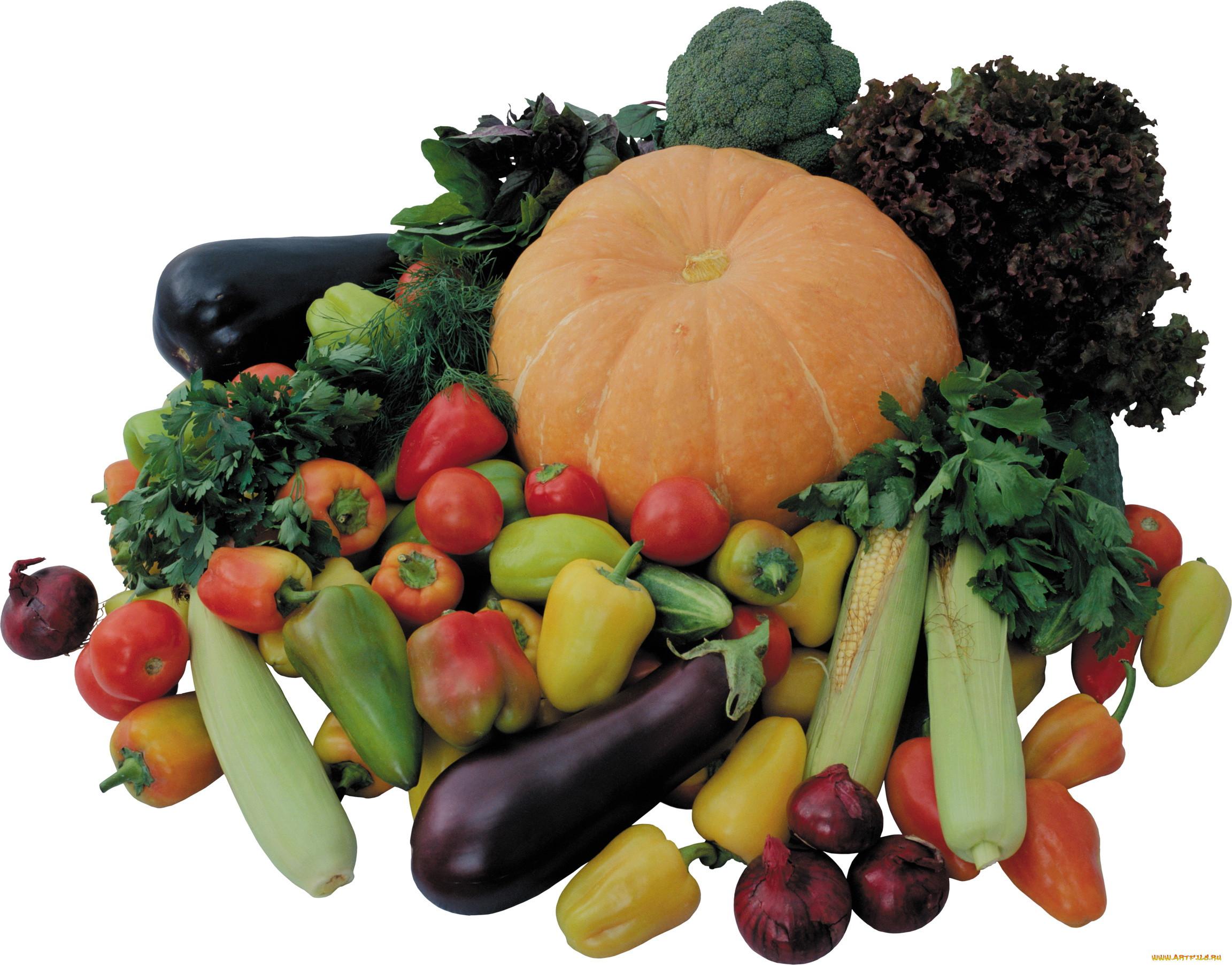 Картинки все овощи и фрукты